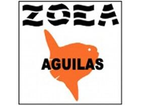 Zoea Aguilas